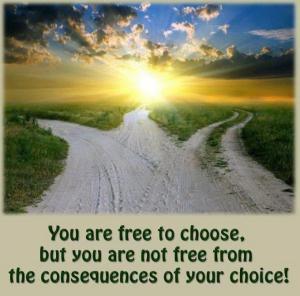 Free to Choose 2