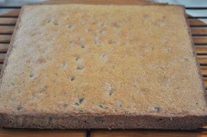 Graham Cracker Chocolate Chip Snacking Cake 2