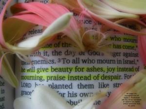 Isaiah 61-3